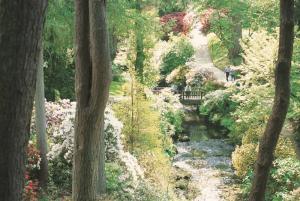 Bodnant Gardens The Dell