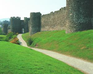 Conwy Castle image 3